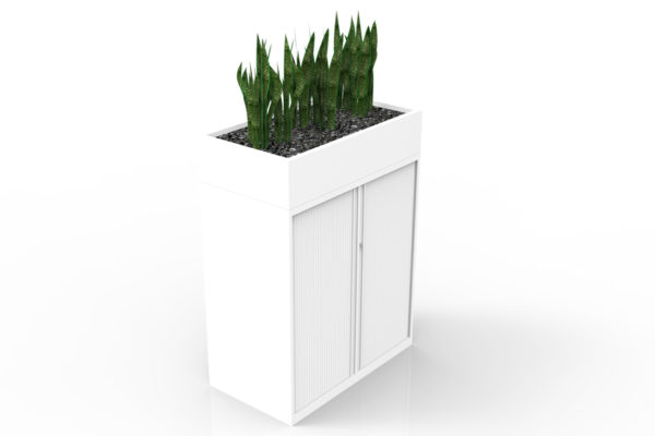 Tambour and Planters